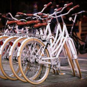 Rowery to najpopularniejsze pojazdy jednośladowe.